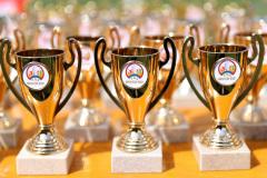 Pokale von Pokal 2000